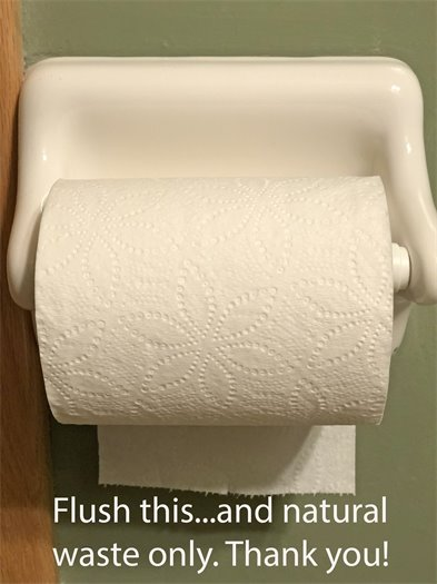 Flush Toilet Paper and Natural Waste and Nothing else