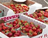 Fresh strawberries in crates