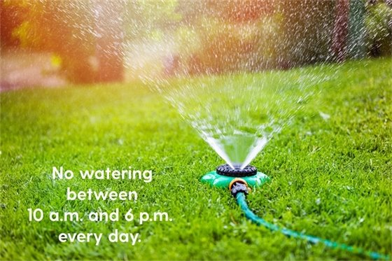 No watering between 10 am and 6 pm every day