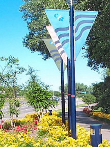 Coon Rapids flags on a boulevard