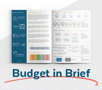 2020 Budget in Brief